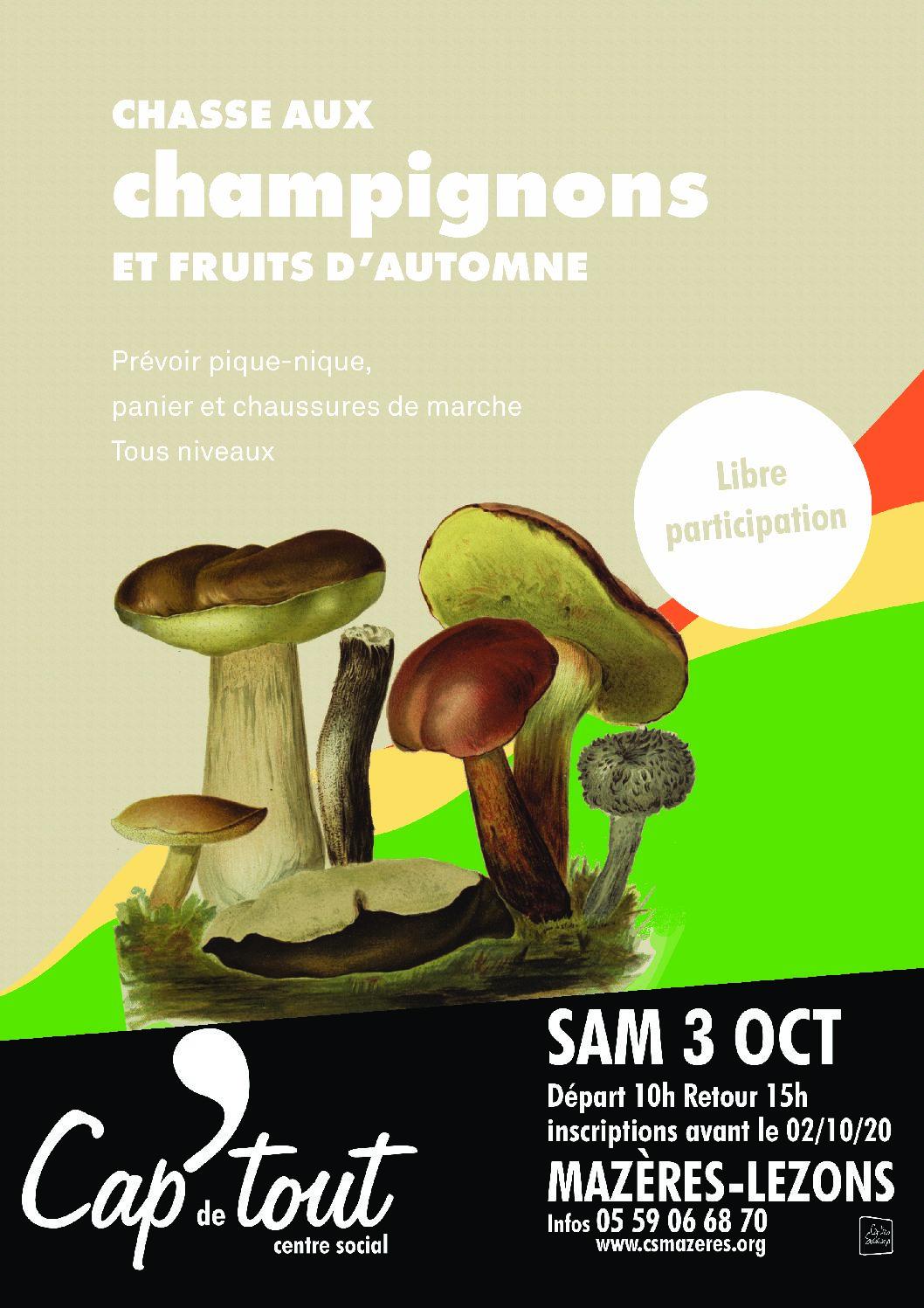Chasse aux champignons et fruits d'automne